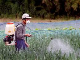 I pesticidi sono in grado di causare la SLA ?