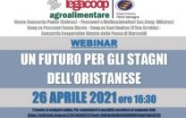 """Webinar """"Un futuro per gli stagni dell'oristanese"""" 26 Aprile ore 16,30"""